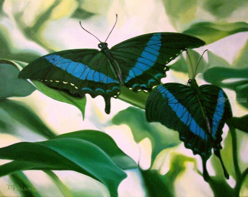BUTTERFLIES MOSS, Paintings, Realism, Wildlife, Oil, By Donna Francis