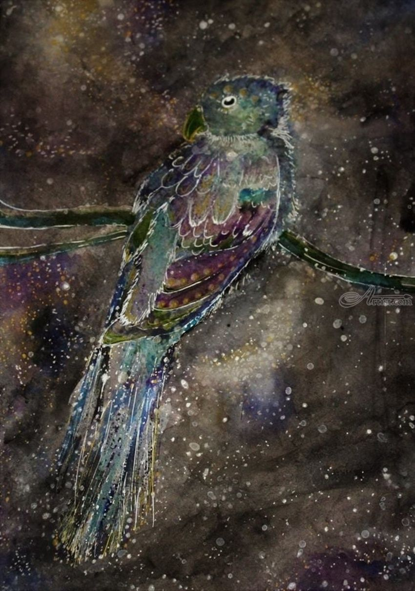 Celestial Bird, Drawings / Sketch, Abstract, Animals, Mixed, By Emily Pearl Rosinbaum