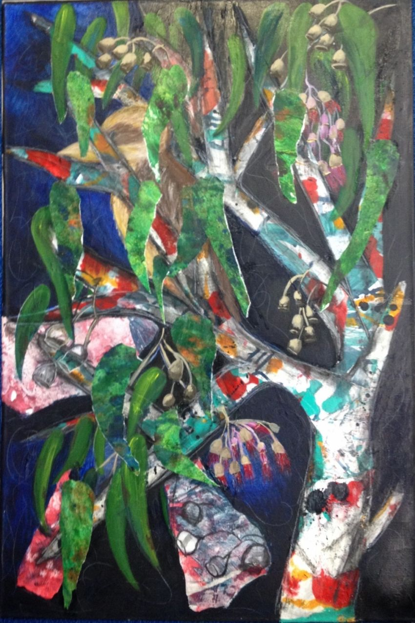 Kookaburra Australian Paintings AbstractExpressionismFine Art RealismSurrealism