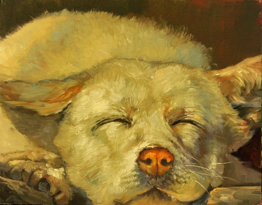 Dreaming..., Paintings, Impressionism, Animals, Canvas, Oil, By Mason Mansung Kang