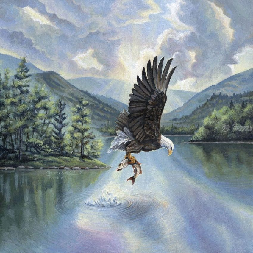Eagle with Fish, Illustration, Paintings, Fine Art, Realism, Animals, Inspirational, Landscape, Nature, Wildlife, Acrylic, By Rebecca Suzanne Magar