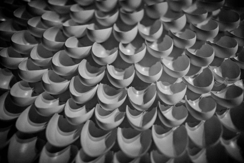 Egg Shells Piece Of Art Decorative Artspaper Artphotography