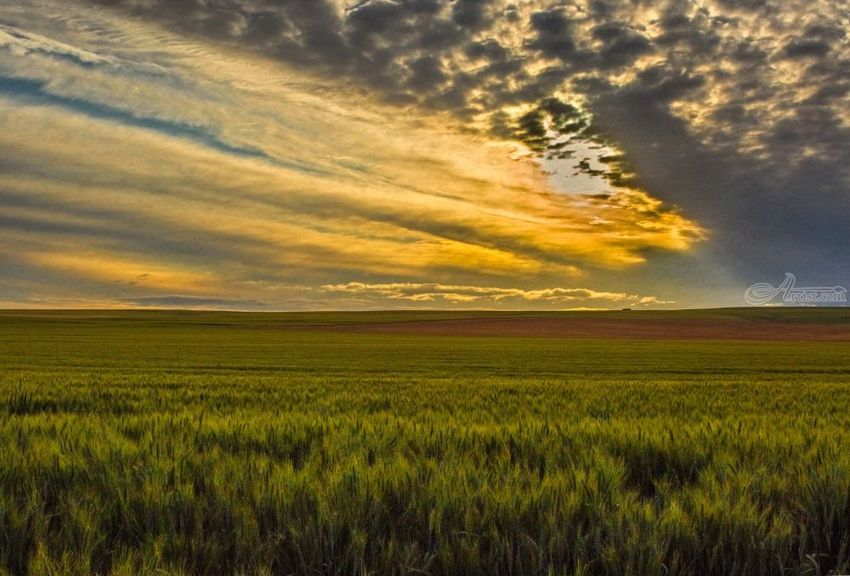 Farming's New Day, Photography, Realism, Landscape, Digital, By Mike DeCesare