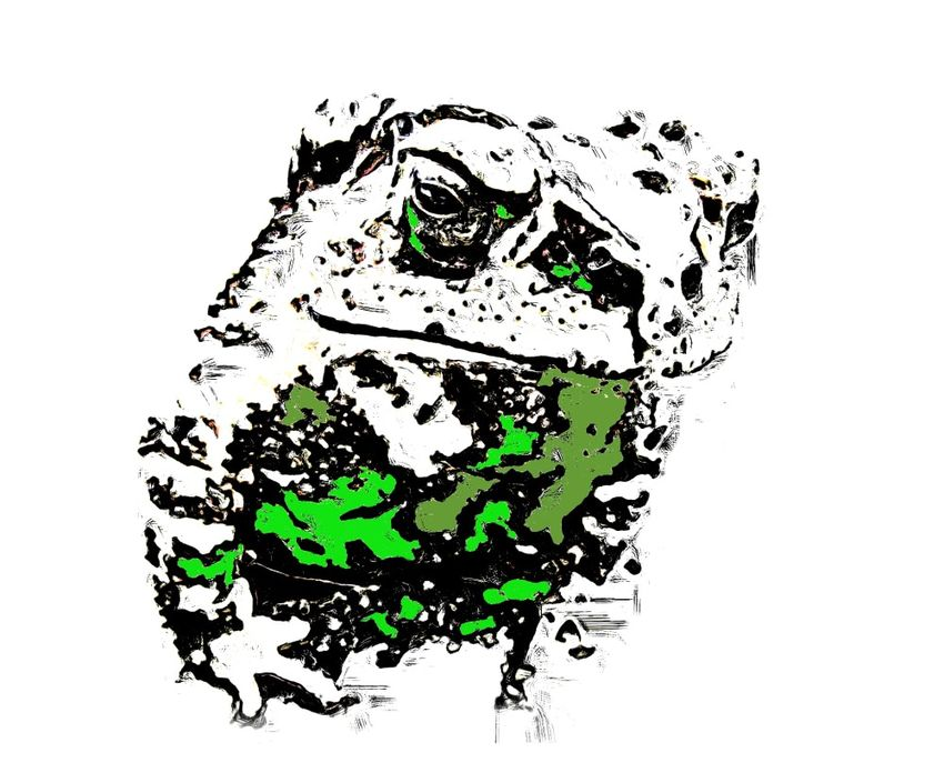 Frog inked, Digital Art / Computer Art, Abstract, Animals, Digital, By Joshua Bindseil