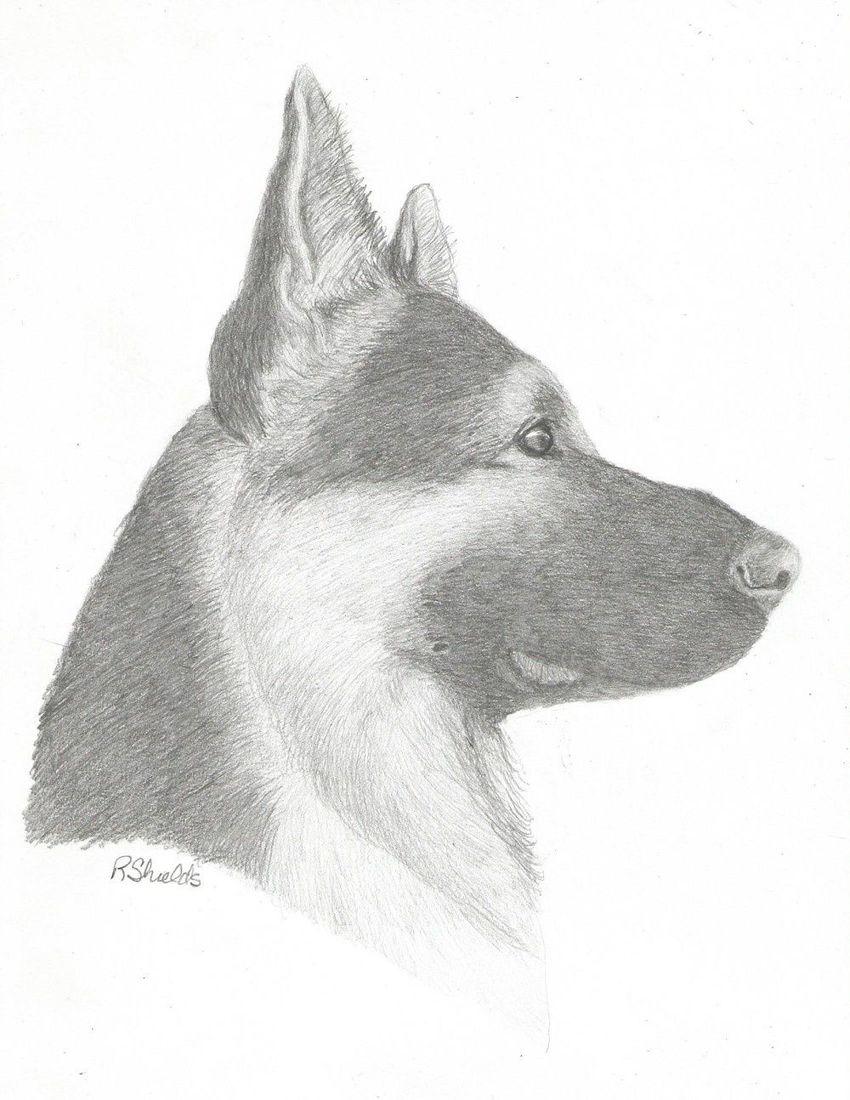 Profile Art Drawing