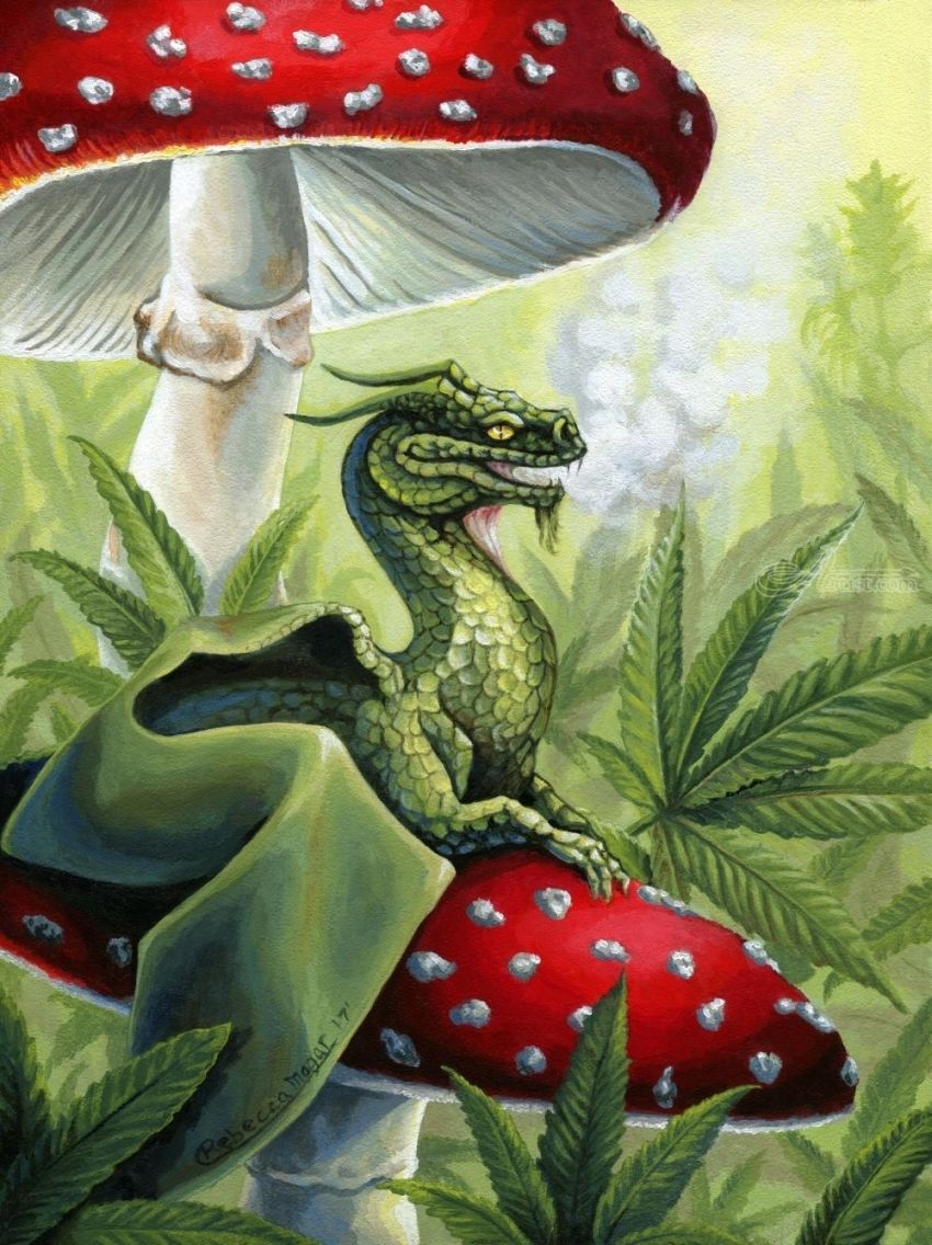 Green Dragon, Illustration, Paintings, Fine Art, Realism, Fantasy, Mythical, Nature, Acrylic, By Rebecca Suzanne Magar