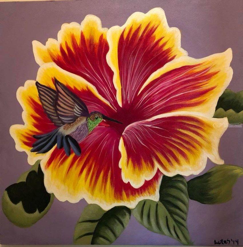 Hummingbird, Hibiscus, Flower, flowers, bird, birds, nature ...