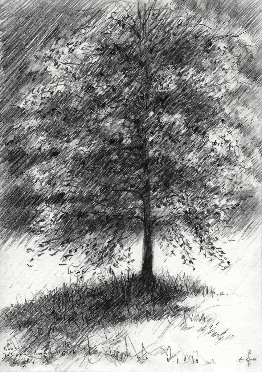Juliana-Bernhard park at Voorburg, Netherlands - 08-04-14, Drawings / Sketch, Abstract,Fine Art,Impressionism,Realism, Composition,Figurative,Inspirational,Landscape,Nature, Pencil, By Corne Akkers