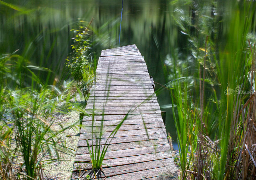 Lake Dock, Photography, Realism, Landscape, Digital, By Mike DeCesare