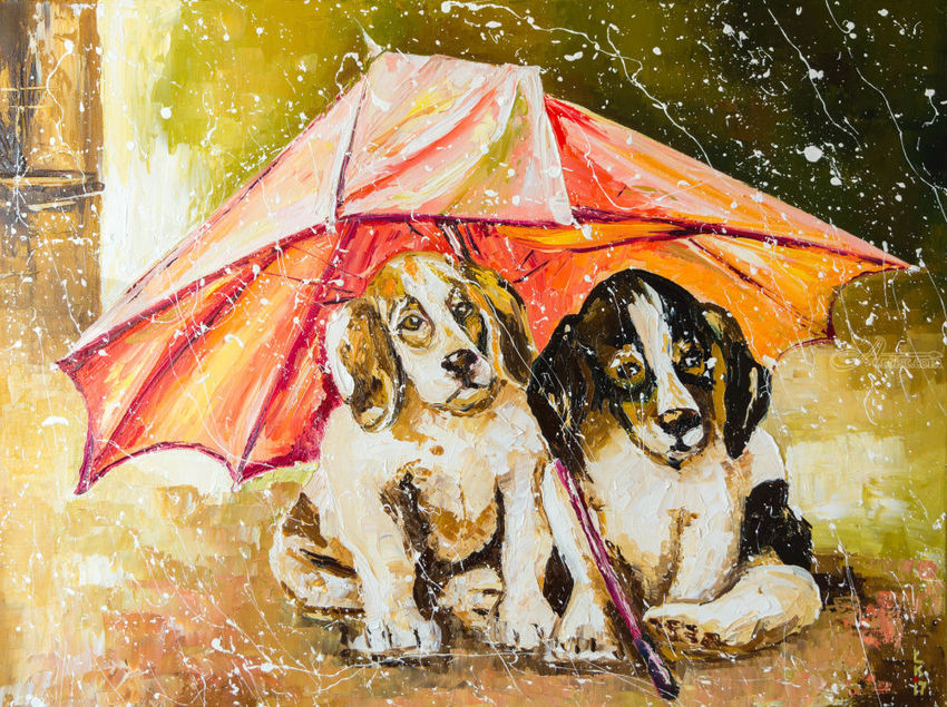 LOST IN THE RAIN, Paintings, Impressionism, Animals, Canvas, Oil, By Liubov Kuptsova