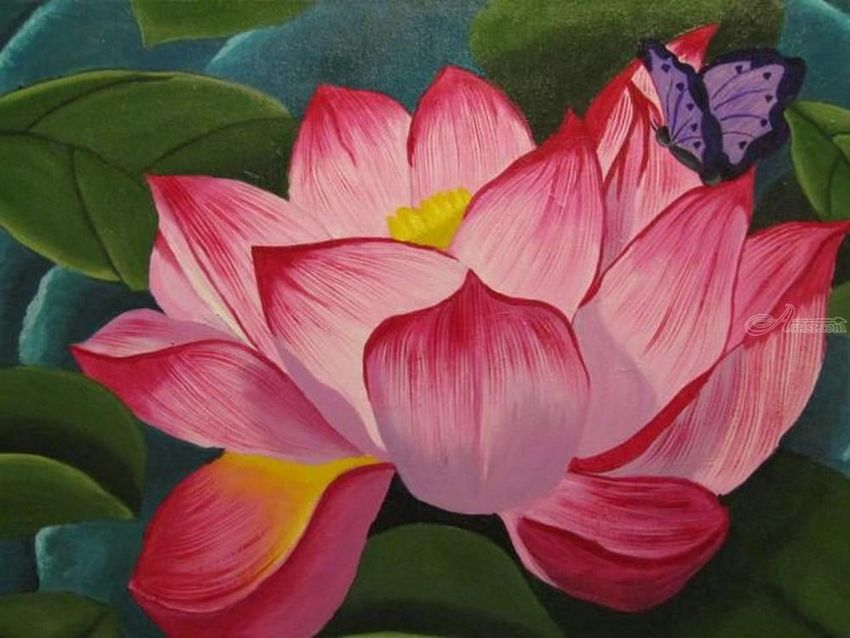 Lotus flower flowers floral nature butterfly butterflies lotus flower flowers floral nature butterfly butterflies contemporary mightylinksfo