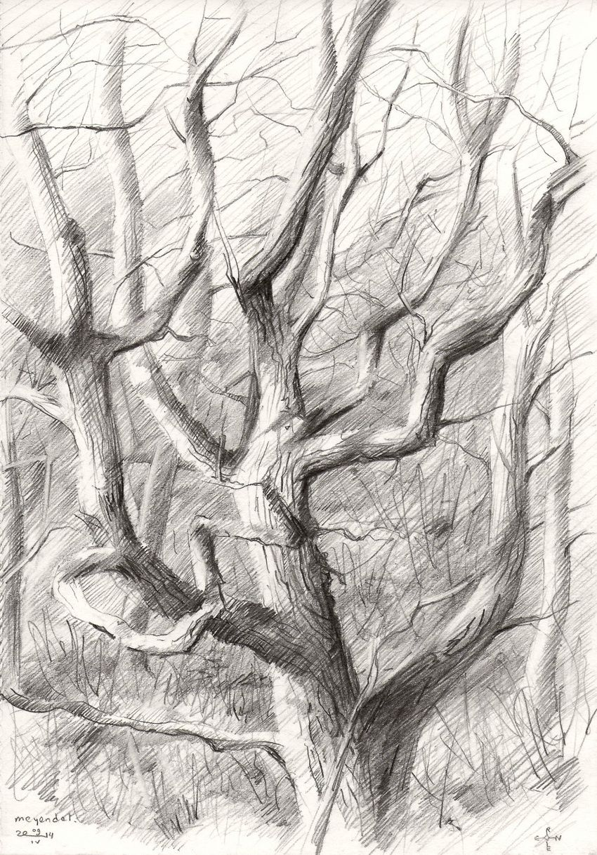 Meyendel - 09-04-14, Drawings / Sketch, Abstract, Fine Art, Impressionism, Realism, Composition, Figurative, Inspirational, Landscape, Nature, Pencil, By Corne Akkers
