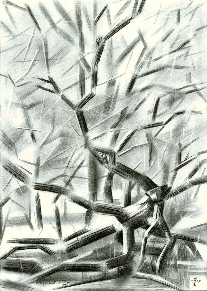 Meyendel - 22-03-16, Drawings / Sketch, Abstract, Cubism, Fine Art, Impressionism, Realism, Surrealism, Composition, Figurative, Inspirational, Landscape, Nature, Pencil, By Corne Akkers