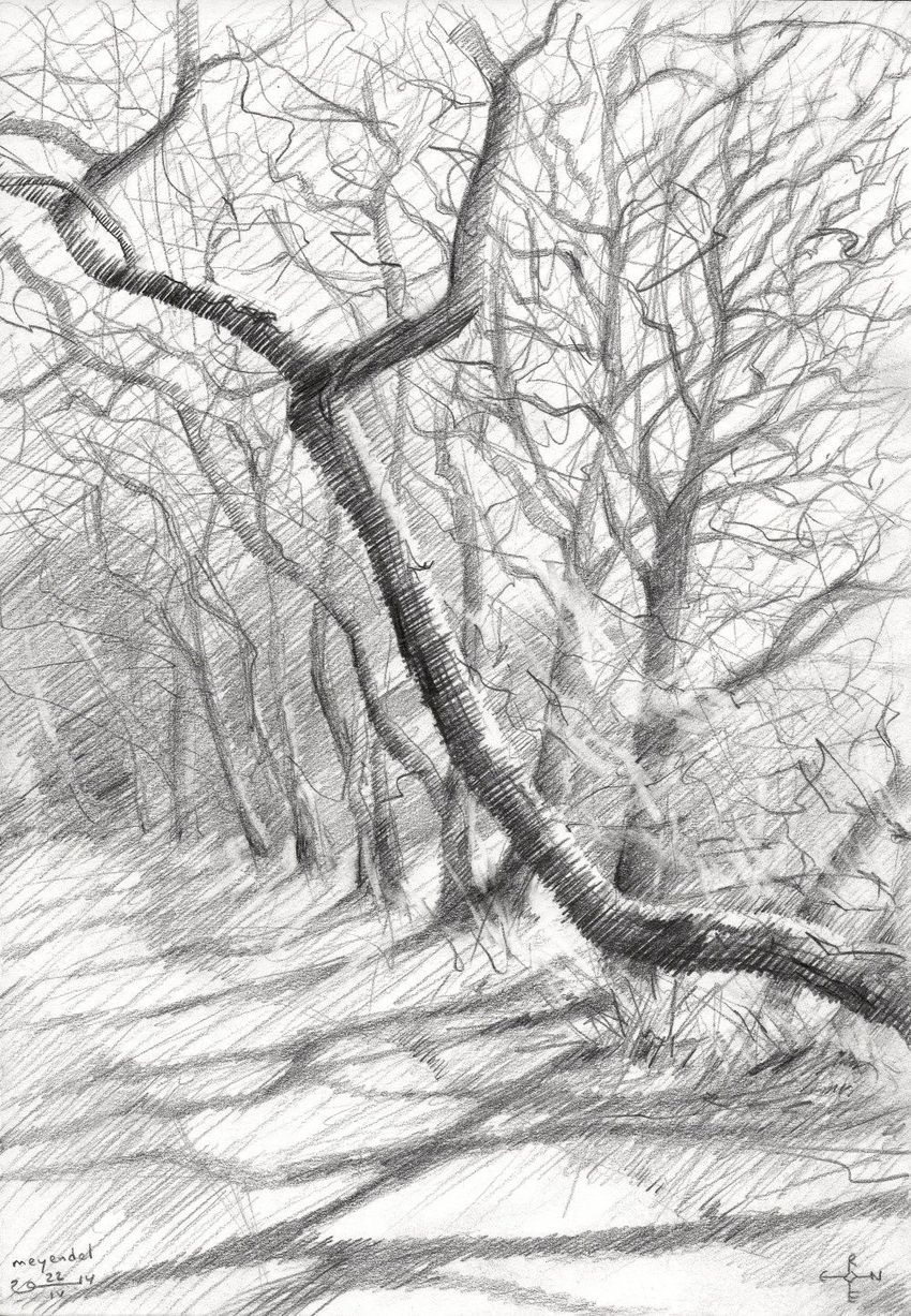Meyendel - 22-04-14, Drawings / Sketch, Abstract, Fine Art, Impressionism, Realism, Composition, Figurative, Inspirational, Landscape, Nature, Pencil, By Corne Akkers