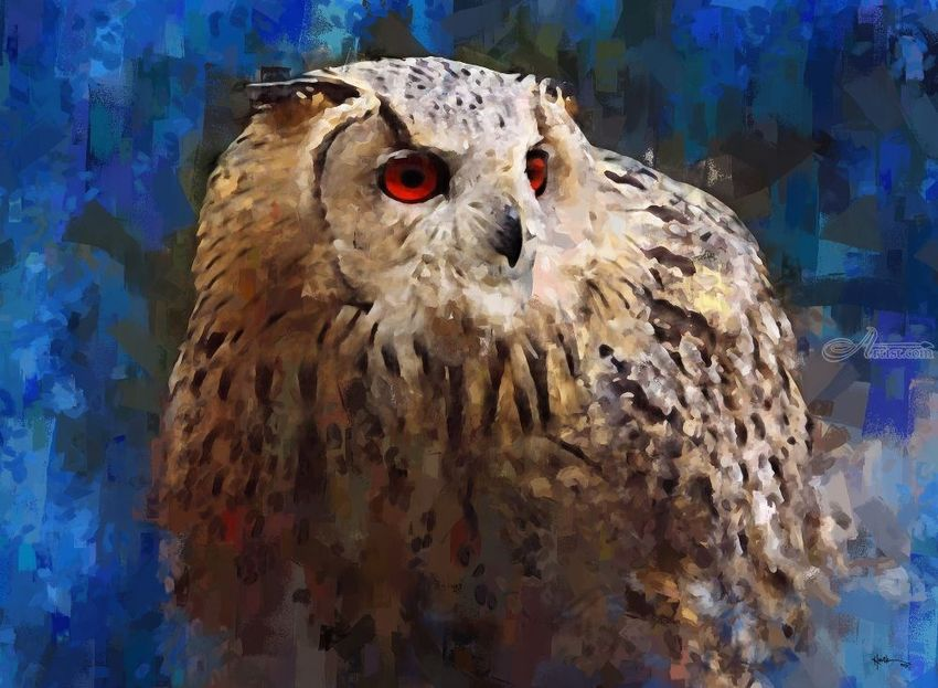Owl-Red-Eye, Paintings, Impressionism, Wildlife, Watercolor, By Angelo