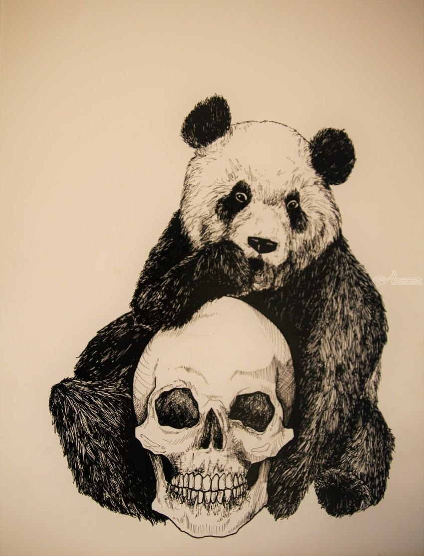 Panda Bear Decorative Arts Drawings Sketch Illustration