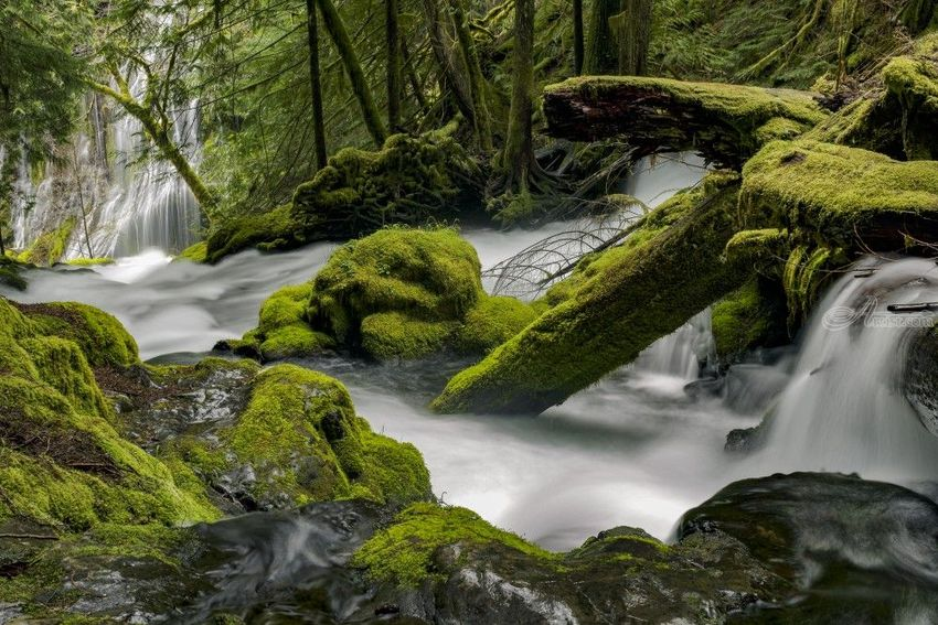 Panther Creek, Photography, Fine Art, Realism, Landscape, Seascape, Digital, By Mike DeCesare