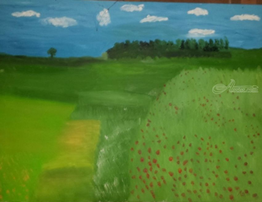 Pasture with Poppies, Paintings, Impressionism, Landscape, Oil, By MD Meiser