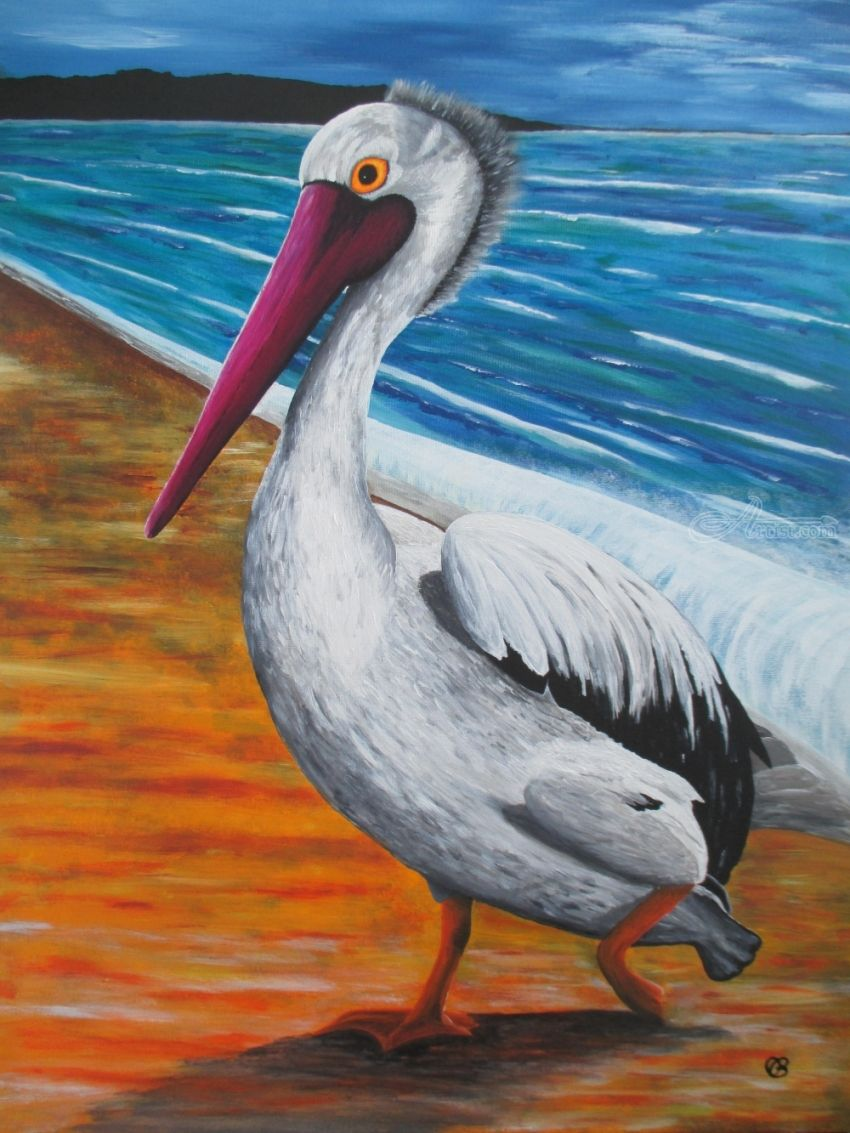 Pelican - Acrylic on canvas, Paintings, Fine Art,Impressionism,Surrealism, Animals, Acrylic,Canvas, By Ann Biddlecombe