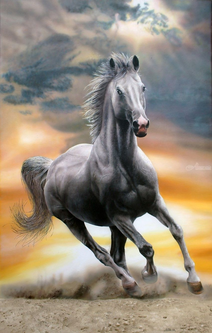 Pride, Paintings, Fine Art,Modernism,Photorealism,Realism, Animals,Figurative,Seascape, Oil, By Ivan Pili