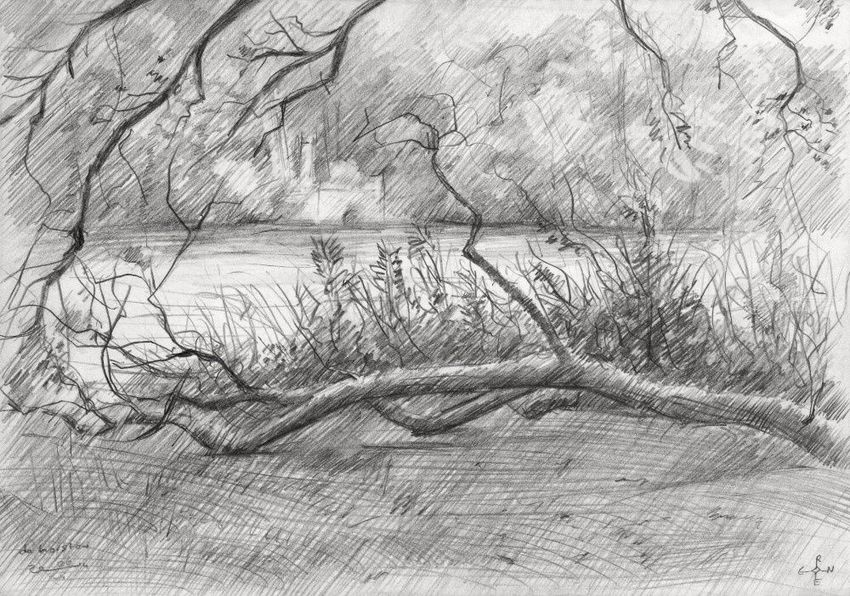 Royal Estate 'De Horsten' - 06-07-14, Drawings / Sketch, Abstract, Fine Art, Impressionism, Realism, Composition, Figurative, Inspirational, Landscape, Nature, Pencil, By Corne Akkers