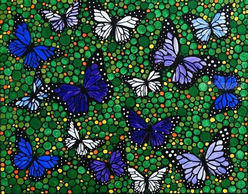 The butterfly collection, Paintings, Abstract,Expressionism,Fine Art, Botanical,Decorative,Floral,Landscape, Acrylic,Canvas, By Rachel Olynuk
