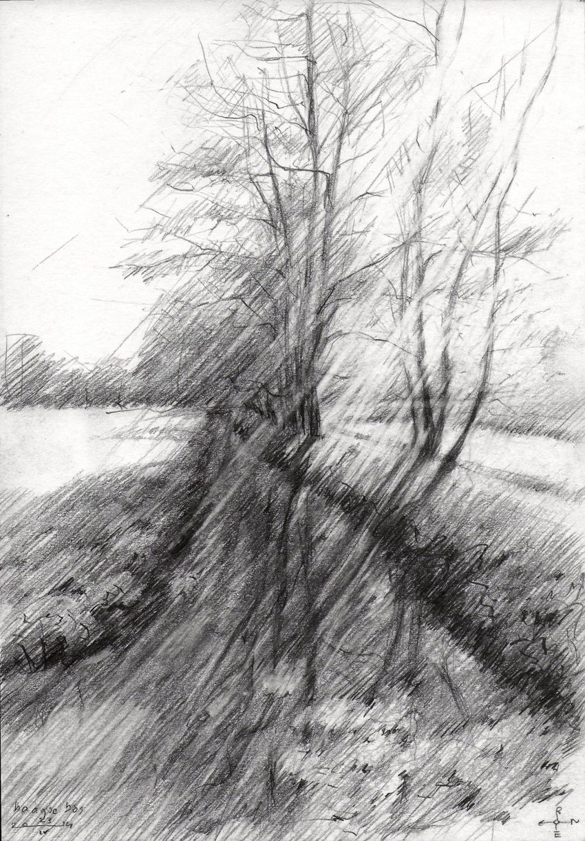 The Hague Forest - 23-04-14, Drawings / Sketch, Abstract, Fine Art, Impressionism, Realism, Composition, Figurative, Inspirational, Landscape, Nature, Pencil, By Corne Akkers