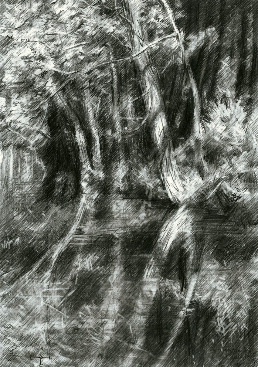 The Hague forest - 23-06-15, Drawings / Sketch, Fine Art, Impressionism, Realism, Surrealism, Composition, Figurative, Inspirational, Landscape, Nature, Pencil, By Corne Akkers