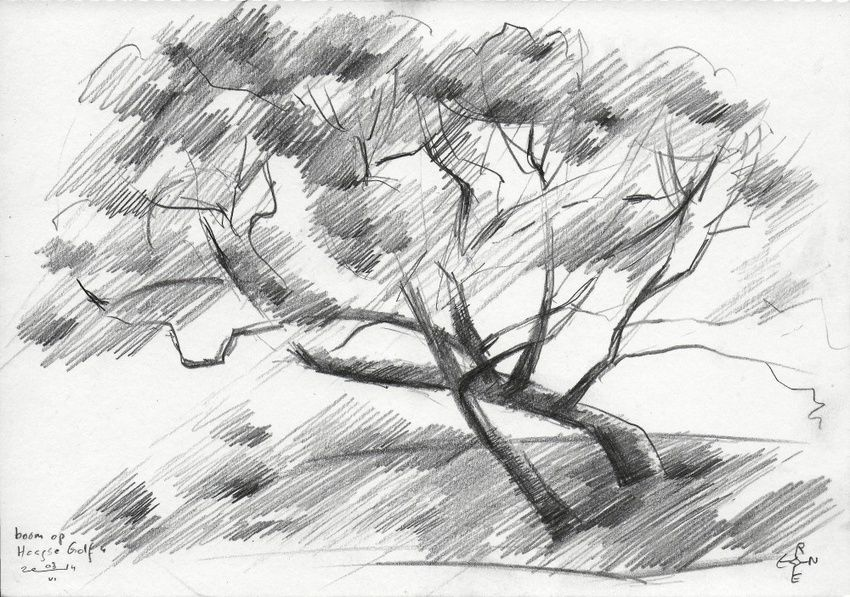 Tree at The Hague Golf 4 - 03-06-14, Drawings / Sketch, Abstract,Cubism,Fine Art,Impressionism, Composition,Figurative,Inspirational,Landscape,Nature, Pencil, By Corne Akkers