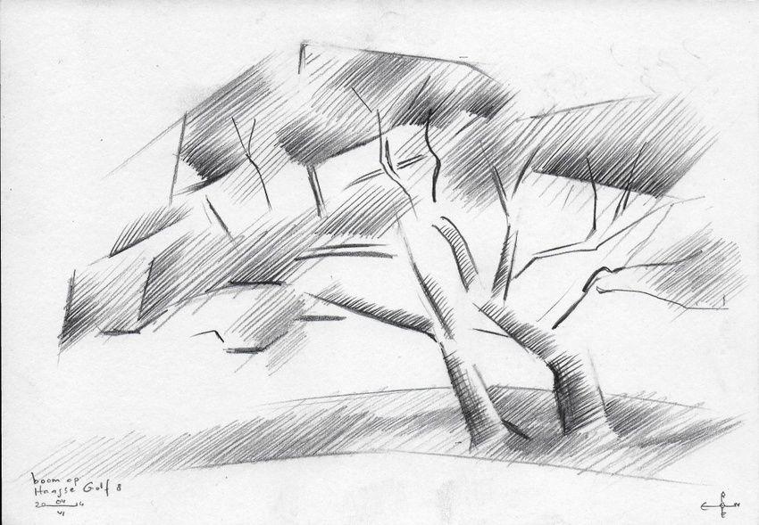 Tree At The Hague Golf 8