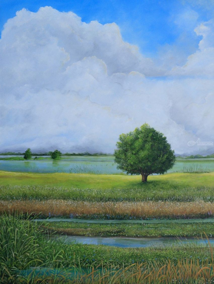 TREE LAKE, Paintings, Impressionism, Landscape, Oil, By Alicia Maury