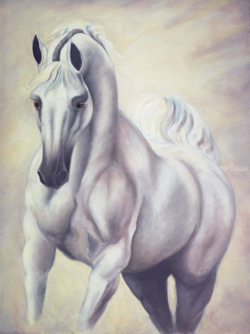 White Knight Arabian Stallion, Paintings, Expressionism, Fine Art, Impressionism, Realism, Symbolism, Animals, Mythical, Nature, Portrait, Wildlife, Oil, Painting, Wood, By Jane Moore
