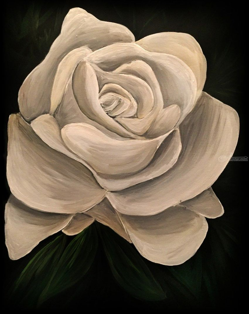 White Rose, Paintings, Fine Art, Floral, Nature, Still Life, Acrylic, By adam santana
