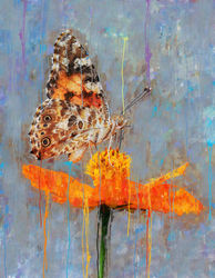 butterfly on orange petaled<br>flower, Paintings, Impressionism, Nature, Mixed,Oil,Painting, By Angelo