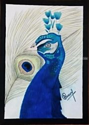 BeautifulPeacock, Paintings, Realism, Landscape, Acrylic, By Naveen Kumar