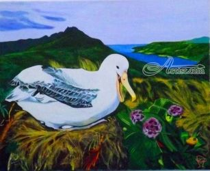 Albatross, Paintings, Realism, Animals,Land Art,Landscape,Nature,Wildlife, Acrylic, By OLIVER MACHADO