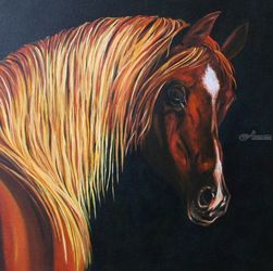 Arabian #1, Paintings, Fine Art,Realism, Animals,Portrait,Wildlife, Canvas, By Rick Seguso