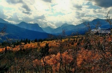 Autumn View to the Bell River, Photography, Photorealism, Landscape, Photography: Photographic Print, By Tracey Vivar