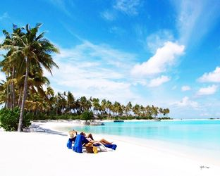 Best Island Resort In Maldives
