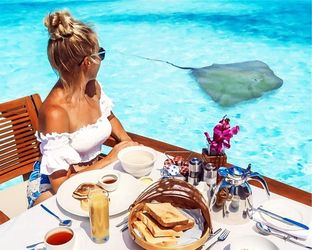 Breakfast With Manta<br>Ray,maldives