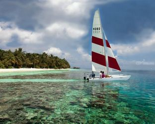 Cat Sail Away In Maldives