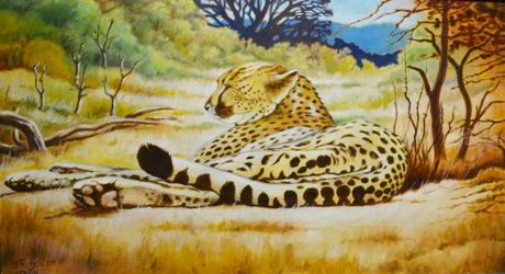 CHEETAH, Paintings, Fine Art, Animals, Canvas,Oil,Painting, By Zenon Rozycki
