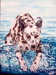 Dalmata Tuffatore, Paintings, Fine Art, Animals, Acrylic,Canvas, By Corinne Tomas