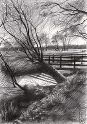 Estate 'Reigersbergen' –<br>16-05-20, Drawings / Sketch, Fine Art,Impressionism,Realism, Composition,Figurative,Inspirational,Landscape,Nature, Pencil, By Corne Akkers