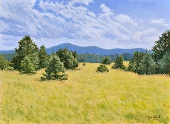 Grass'n'Pines, Paintings, Fine Art,Impressionism,Realism, Landscape,Nature, Oil,Wood, By Dejan Trajkovic