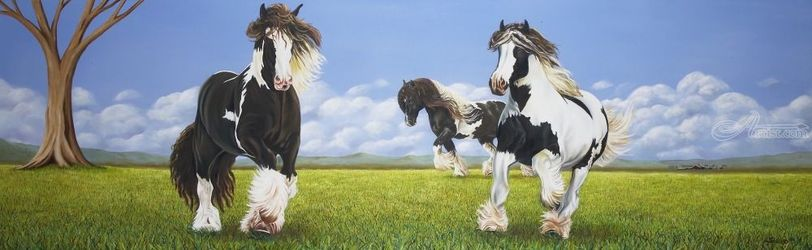Gypsy Vanners, Paintings, Fine Art, Animals,Figurative,Landscape,Portrait,Spiritual, Canvas, By Rick Seguso