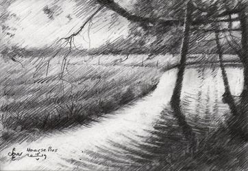 Haagse Bos - 10-05-19, Drawings / Sketch, Fine Art,Impressionism,Realism, Composition,Figurative,Inspirational,Nature, Pencil, By Corne Akkers