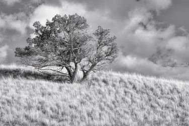 Hilltop, Photography, Realism, Landscape, Photography: Photographic Print, By Mike DeCesare