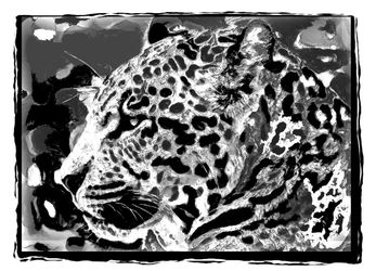 Jaguar 2488, Digital Art / Computer Art, Realism, Animals, Digital, By Joshua Bindseil