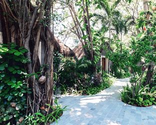 Landscaped Tropical<br>Gardens/maldives/watercolor